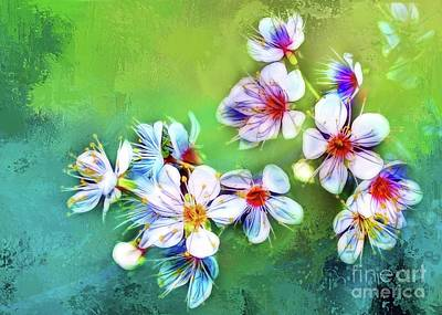 Photograph - Bountiful Blossoms by Judi Bagwell