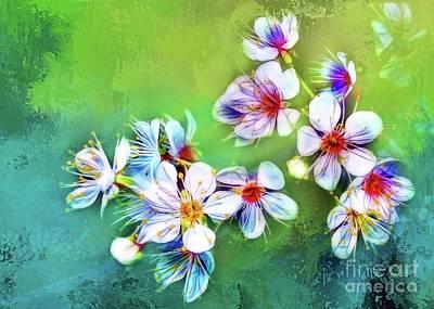 Photograph - Bountiful Blossoms by Judi Bagwell