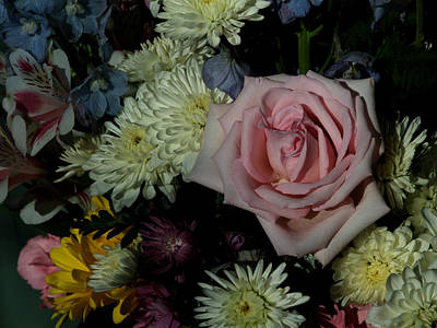 Photograph - Bouquet For A Friend by Barry Doherty