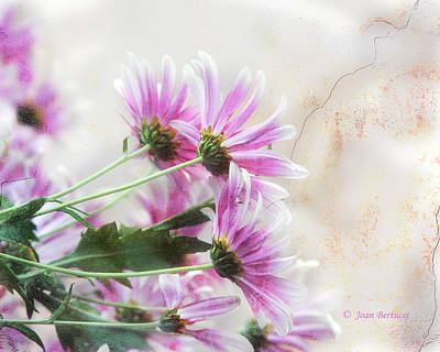 Art Print featuring the photograph Bouquet In Pink by Joan Bertucci
