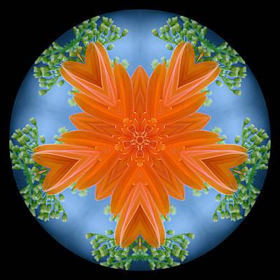 Photograph - Bouquet Mandala by Stephanie Maatta Smith