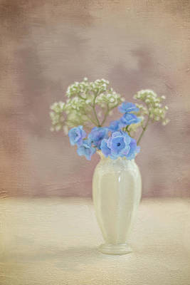 Photograph - Bouquet Of Blues And Whites by Elvira Pinkhas