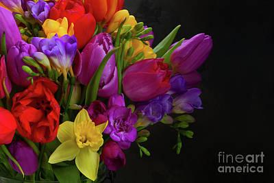Photograph - Spring Glory by Anastasy Yarmolovich