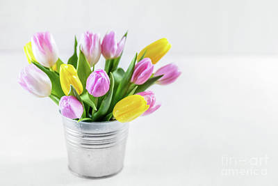 Wooden Photograph - Bouquet Of Fresh Tulips In A Metal Pot. by Michal Bednarek