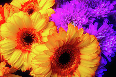 Gerbera Daisy Photograph - Bouquet Of Lovely Flowers by Garry Gay