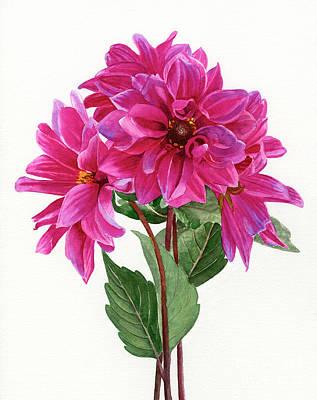Bouquet Of Rose Violet Dahlias Original by Sharon Freeman