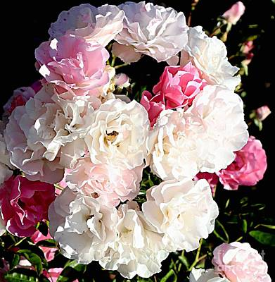 Photograph - Bouquet Of Roses by Marcia Lee Jones
