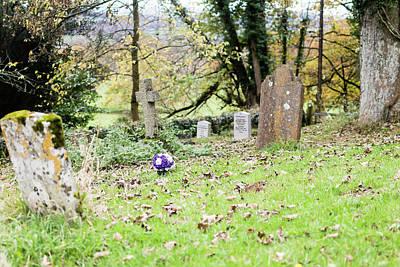 Photograph - Bouquet Of Roses On Cemetery by Jacek Wojnarowski