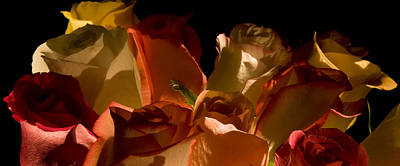 Photograph - Bouquet Of Shadows by Avril Christophe