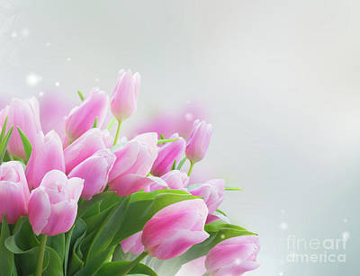 Photograph - Bouquet Of  Tulips II by Anastasy Yarmolovich