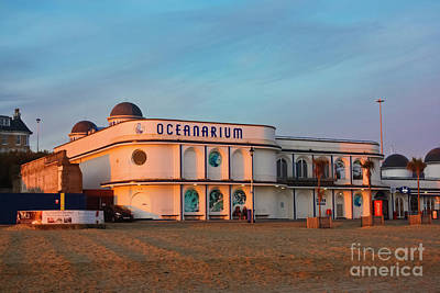 Photograph - Bournemouth Oceanarium  by Terri Waters