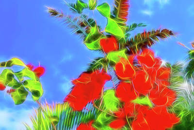 Photograph - Bougainvillea Glow by Kay Brewer