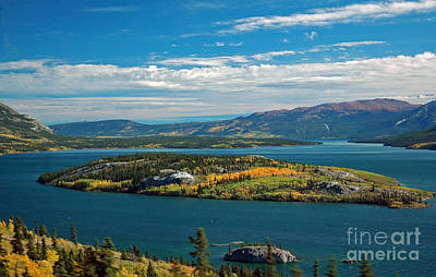 Photograph - Bove Island Yukon by Cindy Murphy - NightVisions