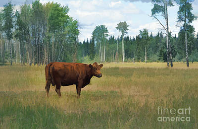 Animal Lover Digital Art - Bovine Bliss by Skye Ryan-Evans