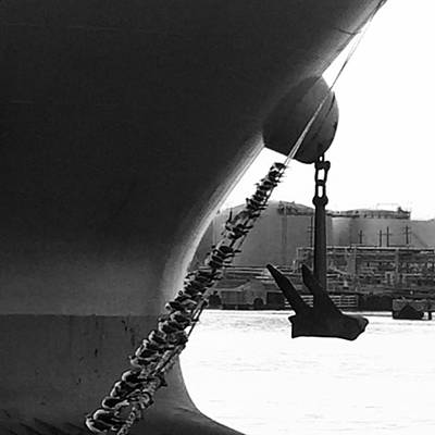 Photograph - Bow by Adam Graser
