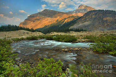 Photograph - Bow Glacier Falls Trail by Adam Jewell