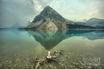 Photograph - Bow Lake Driftwood by Adam Jewell