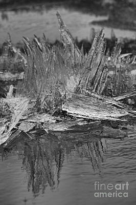 Photograph - Bow Lake Ice Crystals Portrait Black And White by Adam Jewell