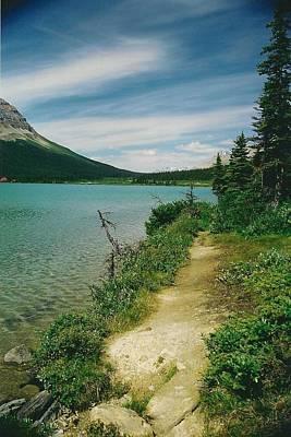 Bow Lake Path Art Print