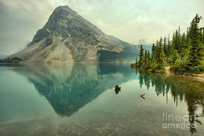 Photograph - Bow Lake Shoreline Reflections by Adam Jewell