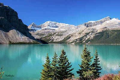 Photograph - Bow Lake by Tim Kathka