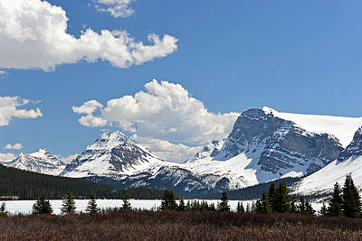 Photograph - Bow Lake Vista by Ginny Barklow