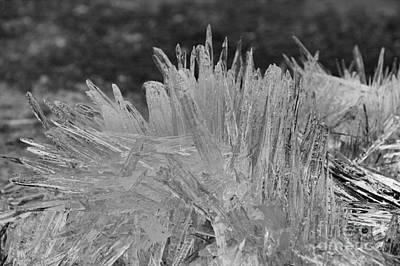 Photograph - Bow Lakeshore Ice Crystals Black And White by Adam Jewell