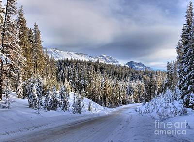 Bow Valley Parkway Winter Scenic Art Print by Adam Jewell