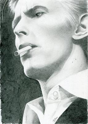 Drawing - Bowie by Bitten Kari