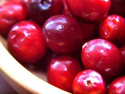 Photograph - Bowl Of Cranberries by Gary De Capua