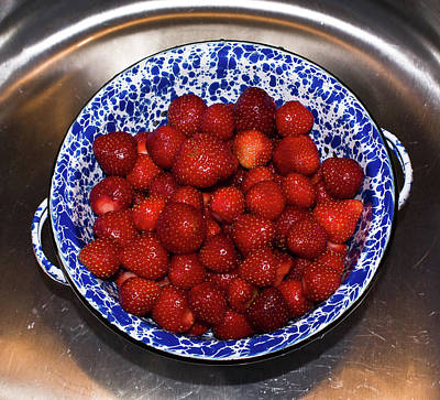 Rejoicing Photograph - Bowl Of Strawberries 1 by Douglas Barnett