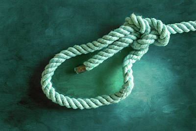 Photograph - Bowline 3 by Steven Greenbaum