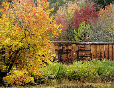 Photograph - Box Car Colors by Frank Winters