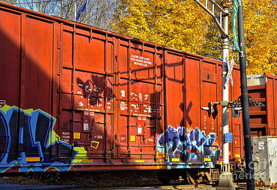 Photograph - Box Car Graffiti by Alana Ranney