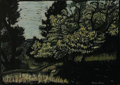 Autumn Scene Drawing - Box Elder Tree by Dawn Senior-Trask