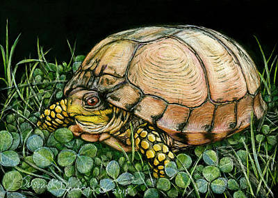 Drawing - Blonde Box Turtle In Clover by Susan Donley