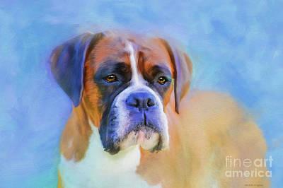 Boxer Dog Digital Art - Boxer Blues by Michelle Wrighton