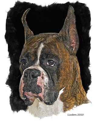 Akc Digital Art - Boxer by Larry Linton