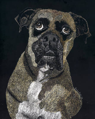 Mixed Media - Boxer Portrait by Jessica Kale