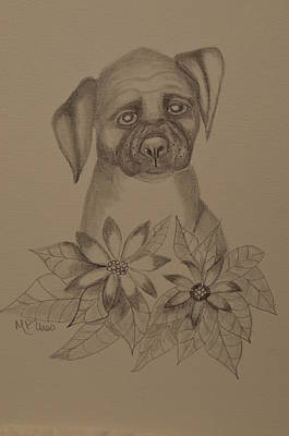 Drawing - Boxer Pup 16-01 by Maria Urso