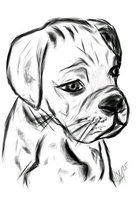 Boxer Puppy Digital Art - Boxer Pup by Leah Mitchell