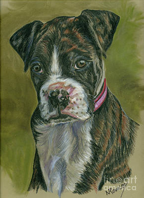 Boxer Pup Art Print by Norma Rowley