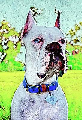 Boxer Pup Outdoors Original