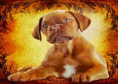 Cute Boxer Digital Art - Boxer Puppy by Charmaine Zoe