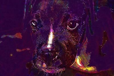 Boxer Puppy Digital Art - Boxer Puppy Dog Cute Young Head  by PixBreak Art