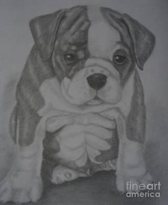 Boxer Puppy Art Print by Ian Lennox