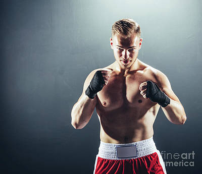 Photograph - Boxer Standing In Fighting Position. by Michal Bednarek