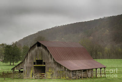 Photograph - Boxley Barn by David Cutts
