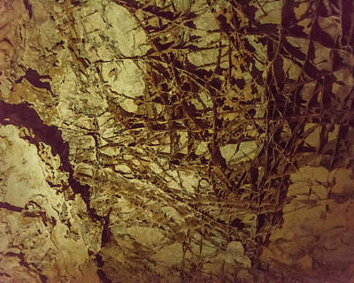 Photograph - Boxwork In Wind Caves by Brenda Jacobs