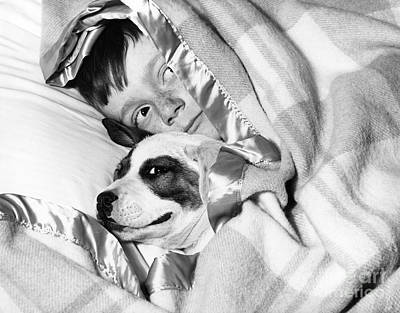 Naughty Dog Photograph - Boy And Dog Hiding Under Blanket by D. Corson/ClassicStock